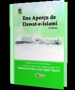 Ene Aperçu de Dawat-e-Islami