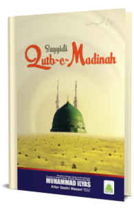 Sayyidi Qutb-e-Madinah