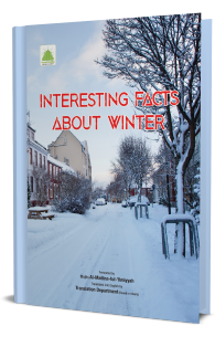 Interesting Facts About Winter