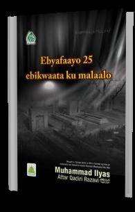 Qabr Walon ki 25 Hikayaat
