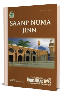 Sanp Numa Jin