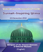Glimpses of the Blessed Manners of Beloved Mustafa صلی اللہ تعالی علیہ والہ وسلم