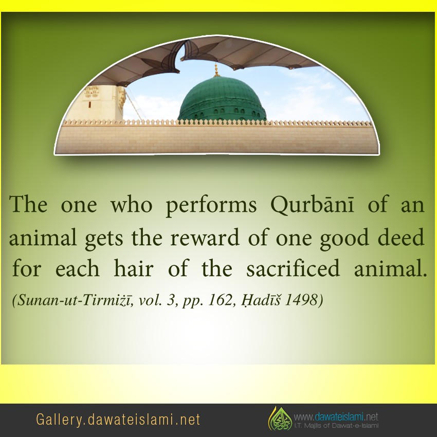 The one who performs Qurbānī of an animal gets