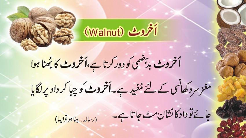 akhrot (Walnut) kay fawaid