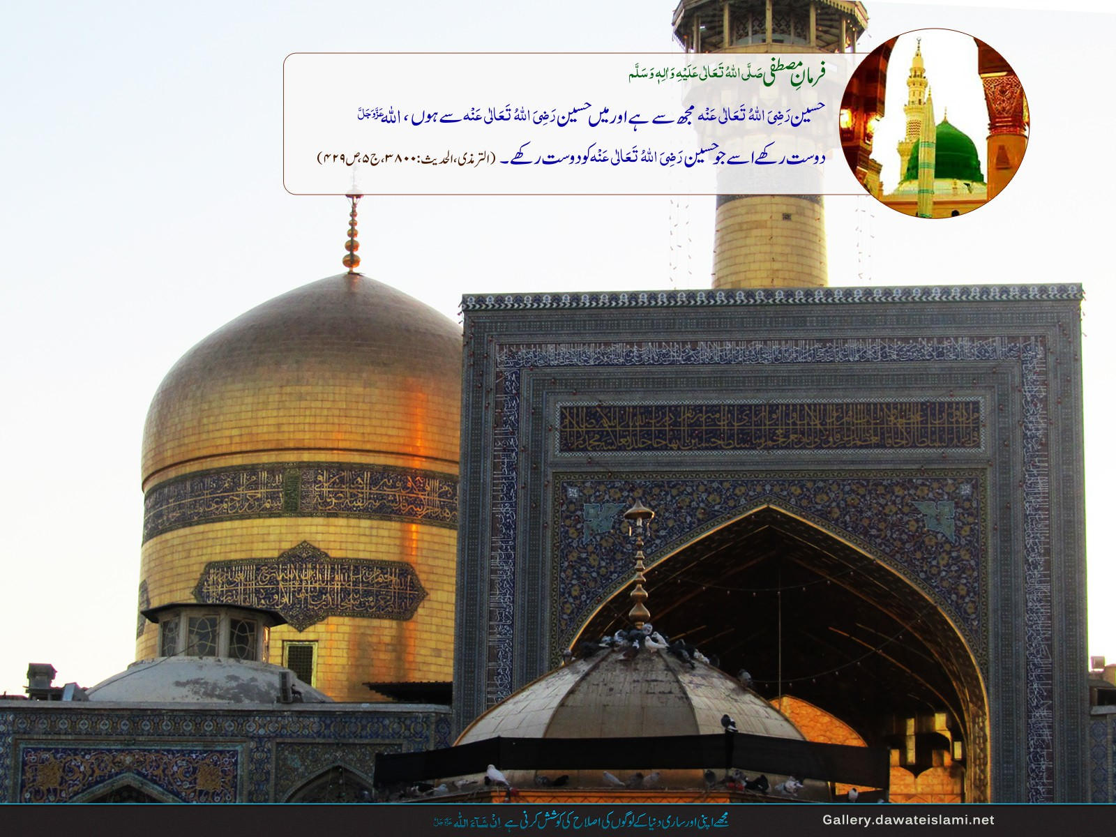 hazrat imam hussain Imam husayn was imam for a period of ten years, all but the last six months coinciding with the caliphate of mu'awiyah imam husayn lived under the most difficult outward conditions of suppression and persecution.