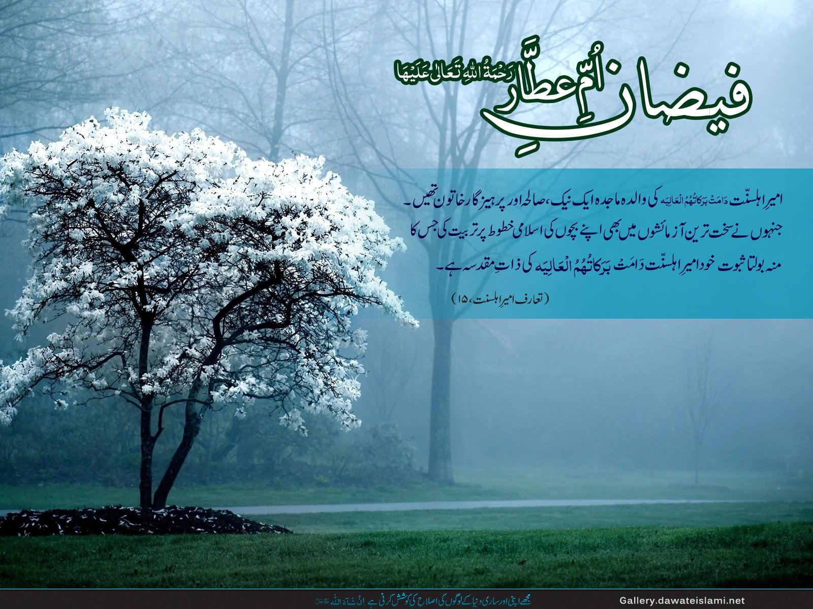 Walida e Ameer Ahl e Sunnat- Safar Wallpaper