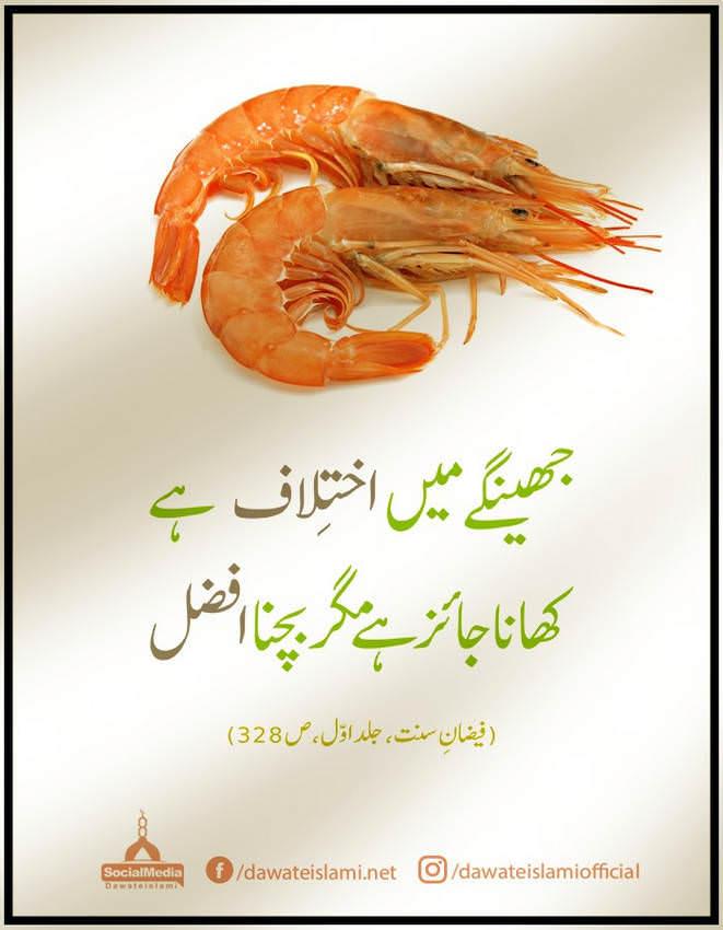 Jhingay ka khana jaiz hai mager khanay say bachna afzal hai
