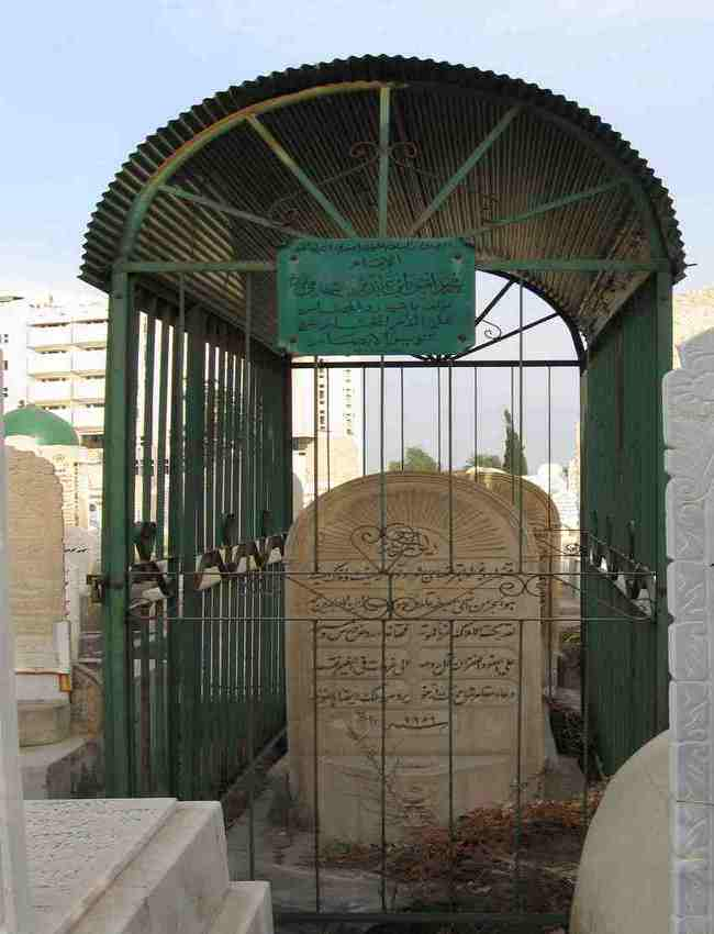 حضرت محمد امین ابن عابدین شامی قادری رحمۃ اللہ تعالی علیہ
