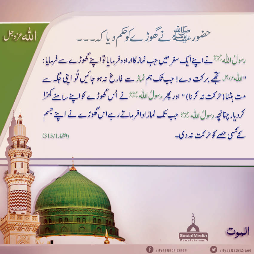 Huzoor ﷺ Nay Ghoray Ko Hukm Dia