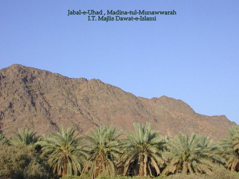 Jabal Uhud, Madina 49