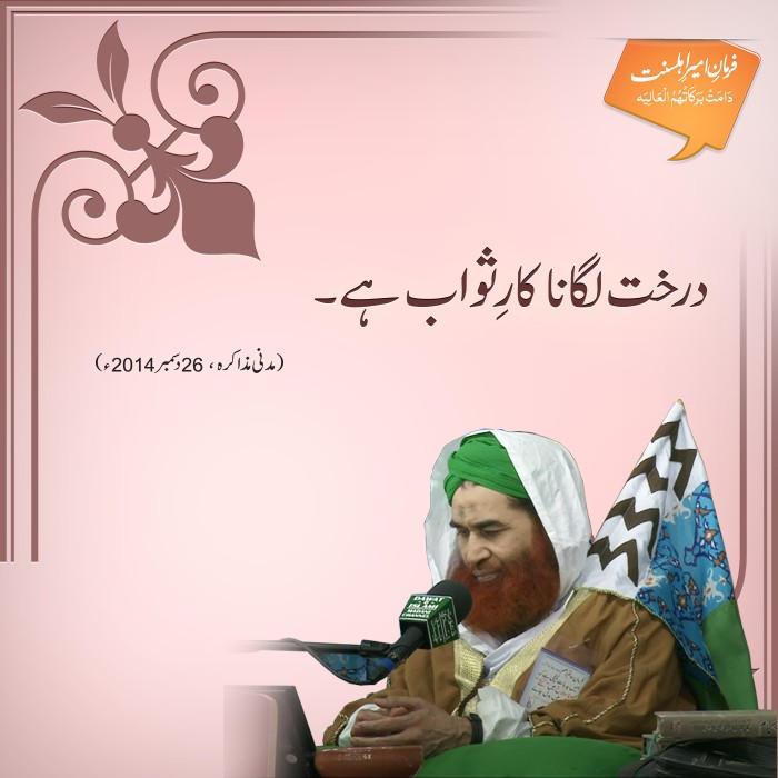 Darakht Lagana Kaar-e-sawab Hai
