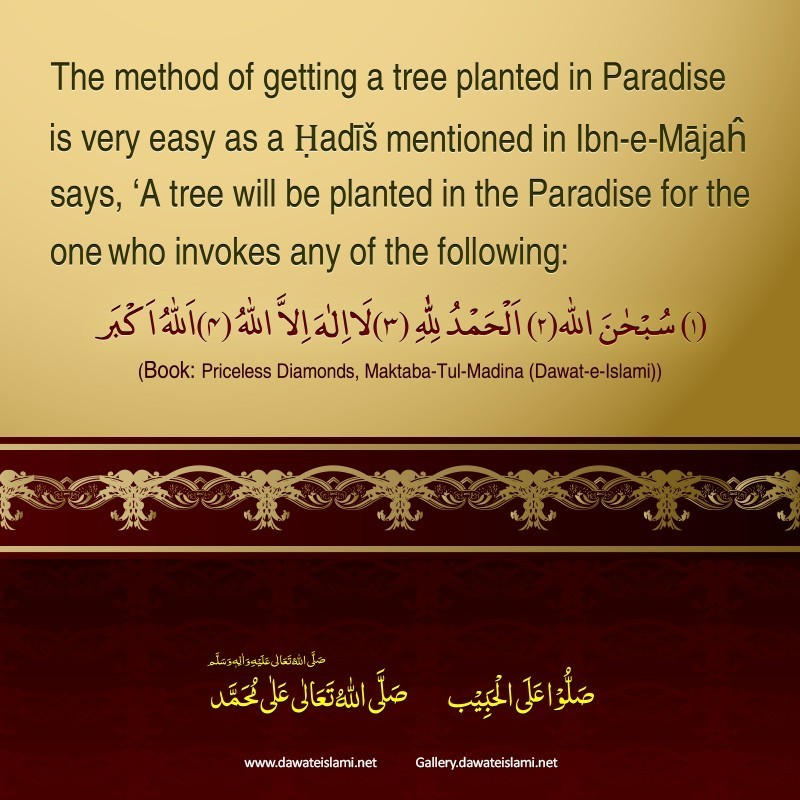 Lets Plant Several Trees In Paradise