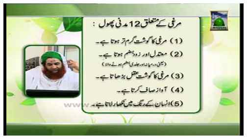 Madani Khabrain Urdu - 24 Jumadi ul Aakhir - 05 May