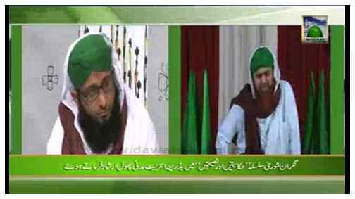Madani Khabrain Urdu - 30 Jumadi ul Aakhir - 11 May