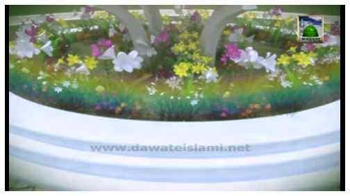Madani Guldasta(397) - Hajj Karne Kay Liye Janay Walay Par Kiya Farz Hai?