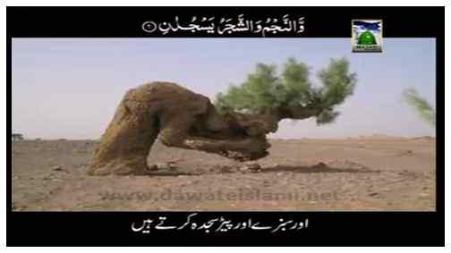 Madani Muzakra - Jaib Kharchi - Subtitled