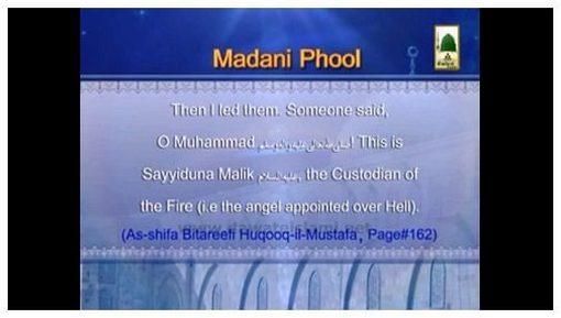 Madani Phool-08 in English (Meraj-un-Nabi)