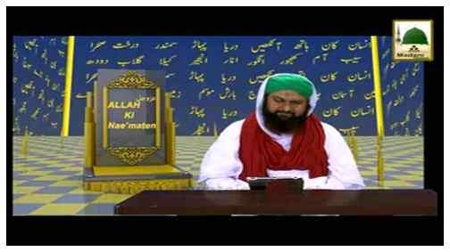 Allah Ki Nematain(Ep:10) - Nigahon Ki Hifazat
