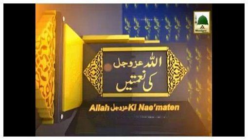 Allah Ki Nematain(Ep:13) - Pani Ki Nemat