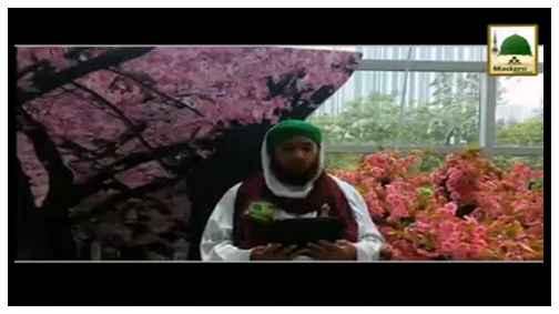 Madani Phool - Maah-e-Rajab Main Musliman Ki Pareshani Dur Karnay Ki Fazeelat