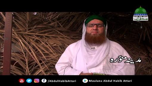 Madani Phool - Madina-e-Munawwara Say Majlis Kay Bad Ki Dua Kay Muta-alliq Madani Phool