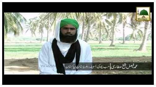 Madani Inqilab(Ep:95) - Faisal Shaikh Attari