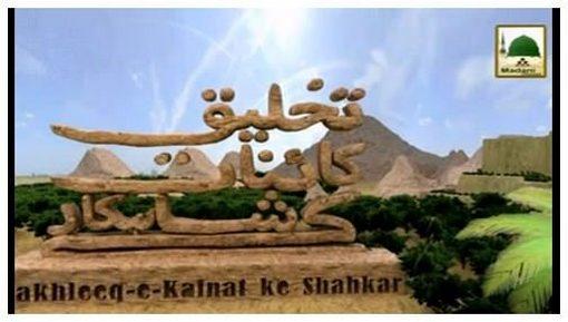 Takhleeq e Qainaat Kay Shahkar(Ep:01) - Gandum Aik Nemat Hai