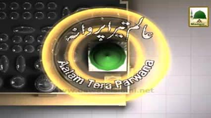Aalam Tera Parwana(Ep:37) - Hajj Ki Mubarak Batain