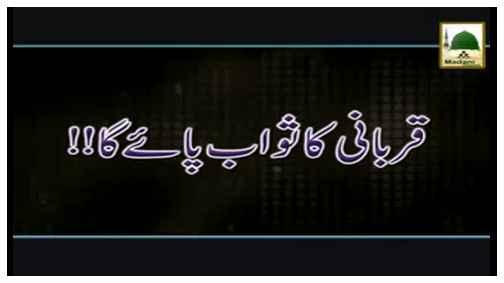Qurbani Ka Sawab Paye Ga