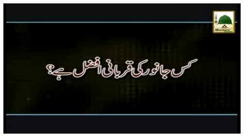 Kis Janwar Ki Qurbani Afzal Hai?