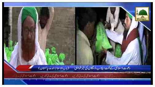 News Clip-19 Sep - Dawat-e-Islam Kay Tehat Sailab Zadgaan Ki Khair Khawahi