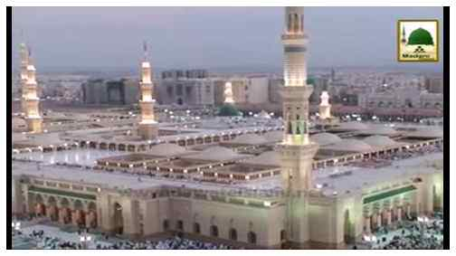 Aalam Tera Parwana(Ep:36) - Zaireen-e-Madina Ka Ishq-e-Rasool ﷺ