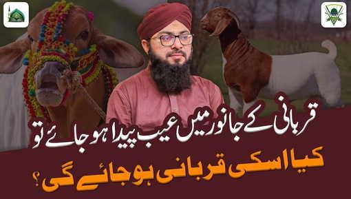 Qurbani Kay Waqt Janwar Main Aib Paida Ho Giya To Kiya Hukm Hai?