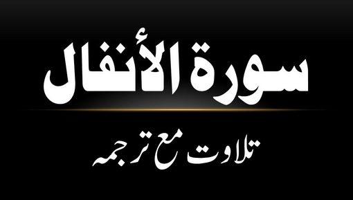 8 - Surah Al-Anfaal - Tilawat Ma Tarjama