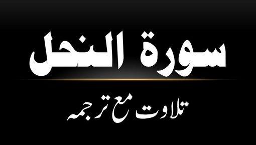 16 - Surah An-Nahl - Tilawat Ma Tarjama