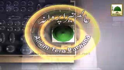 Aalam Tera Parwana(Ep:38) - Hazrat Usman-e-Ghani رضی اللہ عنہ Ka Ishq-e-Rasoolﷺ