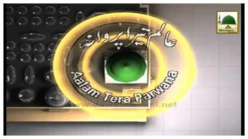Aalam Tera Parwana(Ep:39) - Hazrat Usman-e-Ghani رضی اللہ عنہ Ka Ishq-e-Rasool ﷺ