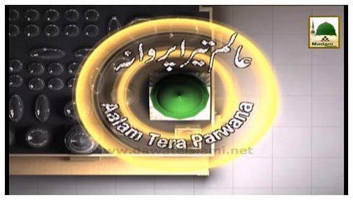 Aalam Tera Parwana(Ep:42) - Hasnain-e-Kareemain