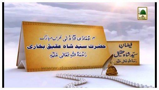 Documentary - Faizan-e-Shah Aqeeq رحمۃ اللہ علیہ