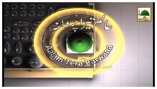 Aalam Tera Parwana Ep 48 - Imam Malik علیہ الرحمہ Ka Ishq-e-Rasool ﷺ