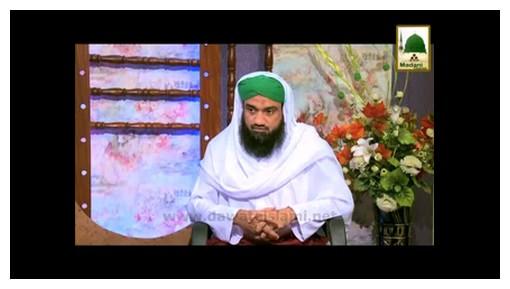 Fazail-e-Mustafaﷺ(Ep:08) - Imam Busiriرحمۃ اللہ علیہ Ka Ishq-e-Rasoolﷺ Part - 02