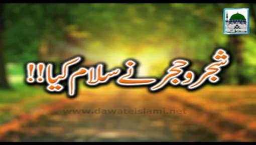 Shajar o Hajar Nay Salam Kia