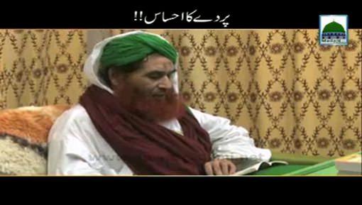 Parday Ka Ehsaas