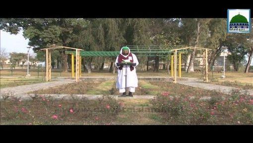 Anbiya Kiram Kay Waqiyat(Ep:74) - Madinay Kay Liye Sarkar ﷺ Ki Dua-e-Muhabbat