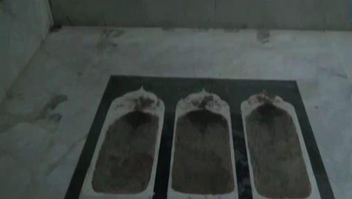 حضرت خواجہ نظام الدین اولیاء رحمۃ اللہ علیہ