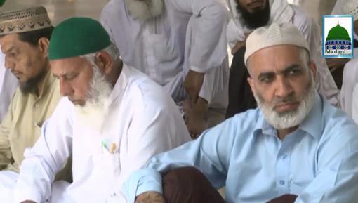 Iman Ki Shakhain Ep 224 - Seerat Hazrat Ameer-e-Muavia رضی اللہ عنہ