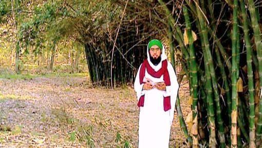 Batini Bimariyon Ki Malomat - Talab e Shuhrat