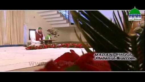 Beri Kay Pattay Jadu Say Hifazat Ka Nuskha