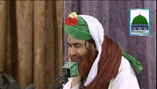 Hajiyon Kay Sath Mina Main Qurbani Kar Saktay Hain?