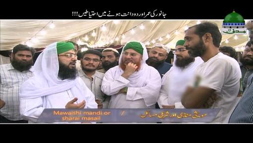 Janwar Ki Umar Aur Do Dant